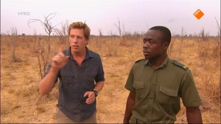 Safari te voet