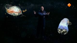 Ontdek de Ruimte - met André Kuipers