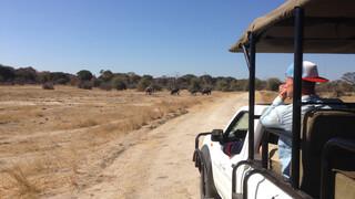 3 Op Reis - Dennis In Zimbabwe En Evi Op Faial