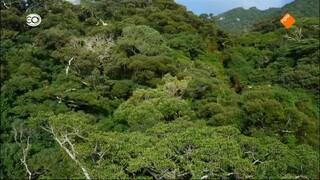 Wild Japan Wild Japan - De Zuidwestelijke eilanden (2/3)