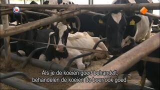 Fryslân Dok - Europarlemantariër Jan Huitema