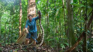 Freek Vonk In Latijns-amerika - Costa Rica