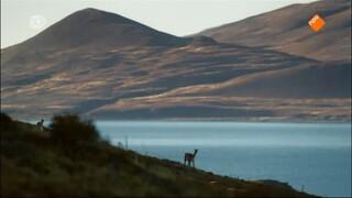 Natuur Op 2 - Wild Patagonia: Vuur En Ijs