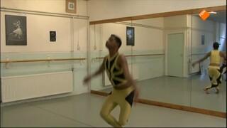Het Klokhuis - Danser