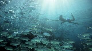 Human Planet - Oceanen