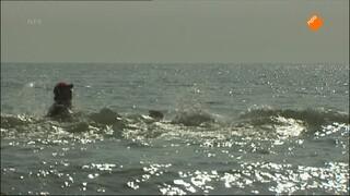 Het Klokhuis - Zwemmend Redden