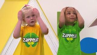 Zingen met Nienke van Zappelin