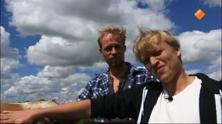 Beestieboys - Koe Janneke