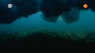 Natuur op 2: Atlantic - Van hemel naar hel (3/3)