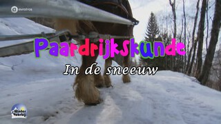 Paardrijkskunde in de sneeuw