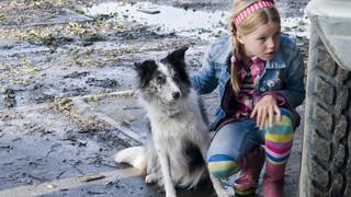 Puppy Patrol - Boris De Speurhond