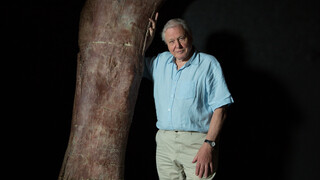 Natuur op 2 Attenborough and the giant dinosaur
