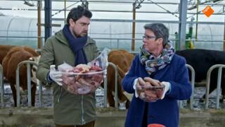 Hoeveel gram vlees per week?