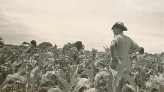 Andere Tijden: Blanke boeren zonder erf
