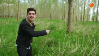 Jagen voor een wilddiner