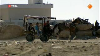 Zembla: Gevangen in Gaza