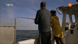 Koken Met Van Boven - Makreel Uit Egmond Aan Zee
