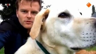 Zomercolumn: selfie-campagne tegen hondenpoep