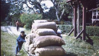 Andere Tijden: Leven in koloniaal Suriname