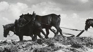 Andere Tijden: Boeren op z'n Amerikaans