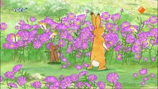 Raad eens hoeveel ik van je hou Een veld vol met bloemen
