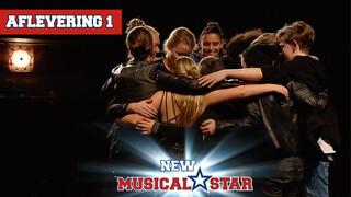 New Musical Star New Musical Star