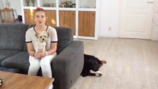 Vlog: hoe gaat het nu met Britt?