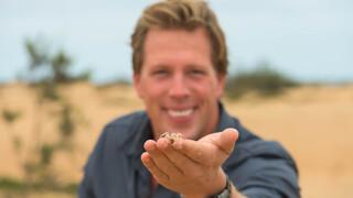 Freeks wilde wereld Namibië - Verstoppertje
