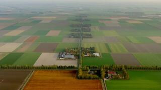 De eerste boeren op Flevoland
