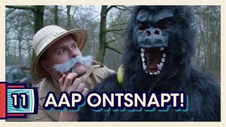 DE LOOPJONGENS AFL. 11 | AAP ONTSNAPT IN AMERSFOORT