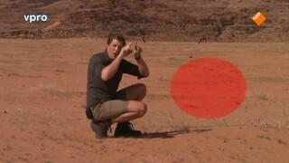 Jordanië - Woestijn is fijn