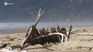 Cannon Beach - by day