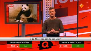 Niest de grote of de kleine panda?