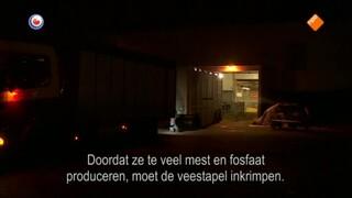 Fryslân DOK: Baas op eigen erf