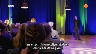 Alain de Botton: Waarde van Kunst