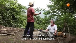 De Boeddhistische Blik - Hermits