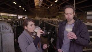 Keuringsdienst Van Waarde - Melk 3