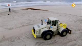 NOS Beatrix sluit Maasvlakte 2
