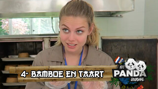 Britt's China Vlog -  Bamboe en panda-taart