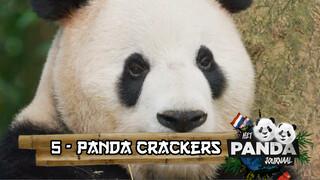 Panda Crackers #5