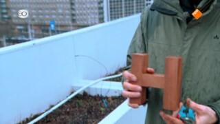Geloof En Een Hoop Liefde - Rotterdam Oude Noorden (1/4