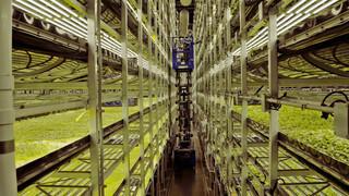 Tegenlicht: Boer zoekt voedselflat