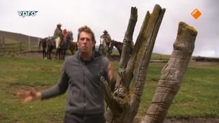 Freeks Wilde Wereld - In De Ban Van De Condor