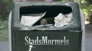 Stadsmormels - Vos