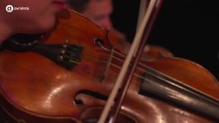 Matangi Quartet - Der Theo und das Mädchen