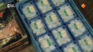 Voedselverspilling (2/2)