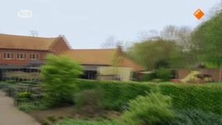 Eucharistieviering - 1e Pinksterdag
