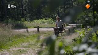 Kan Klaas met een rolstoel door het bos?