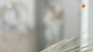 Bodhitv - Adelheid Roosen En Farida Moultmar