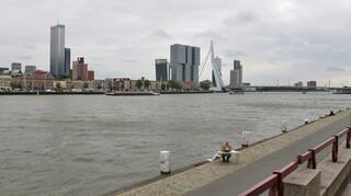 Baardmannetjes - Rotterdam